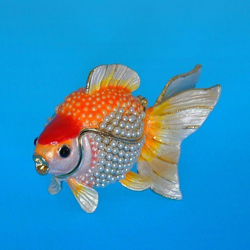приглядывалась золотые рыбки спб купить развлечения Нижневартовске